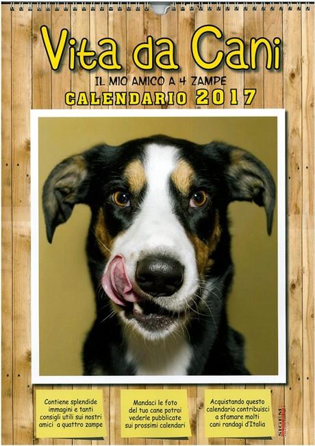 Calendario Per La Vita.Calendario Vita Da Cani